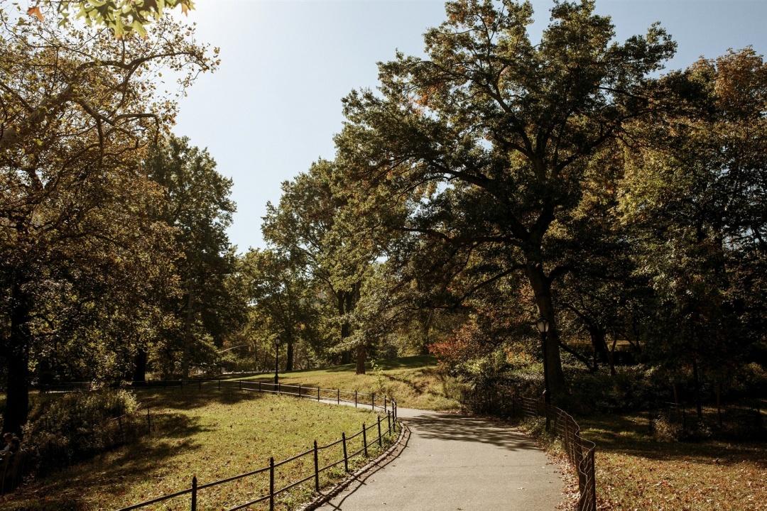 jose melgarejo central park sam steph15 1500