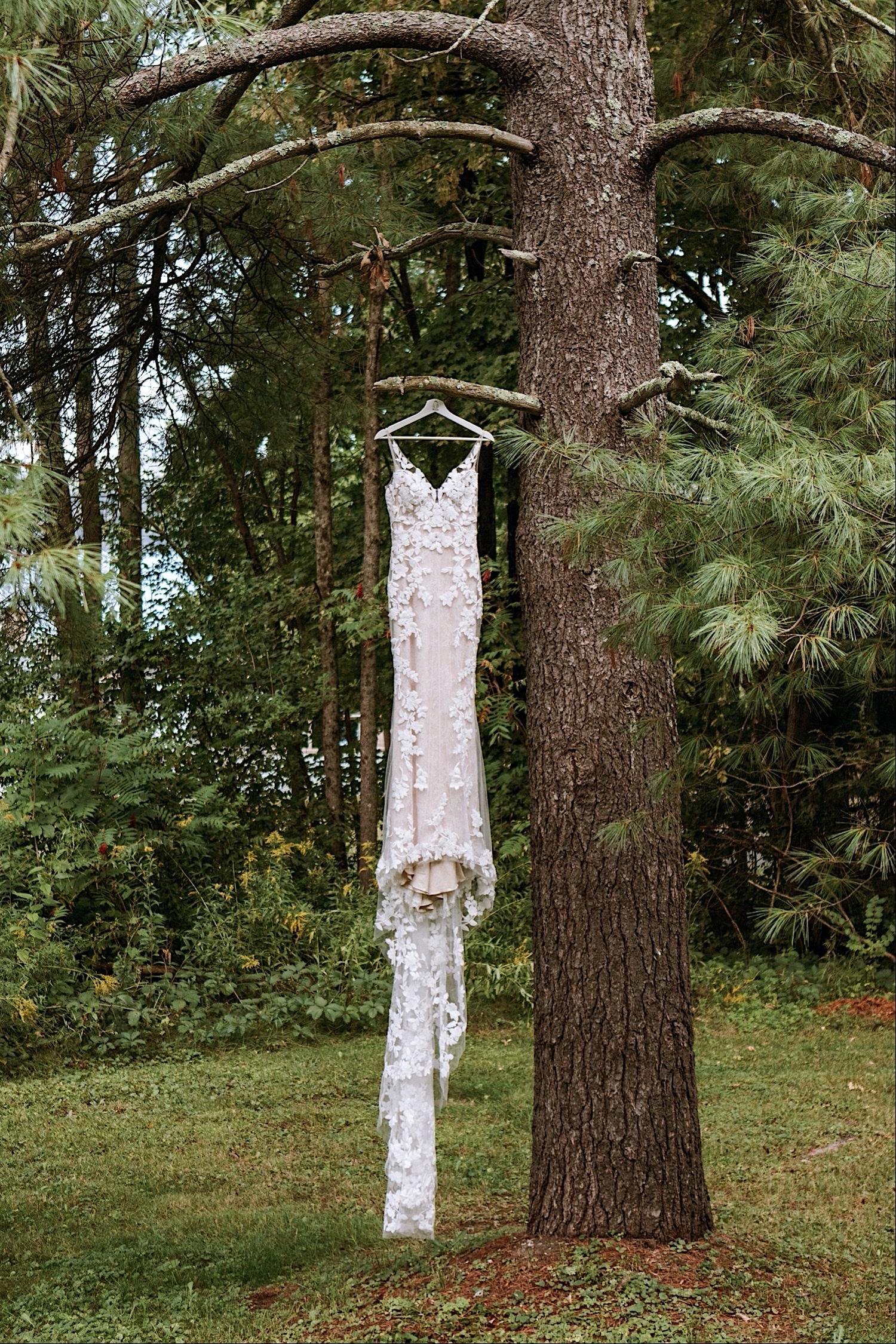 Wedding dress hangs from a tree at Bomoseen Lodge