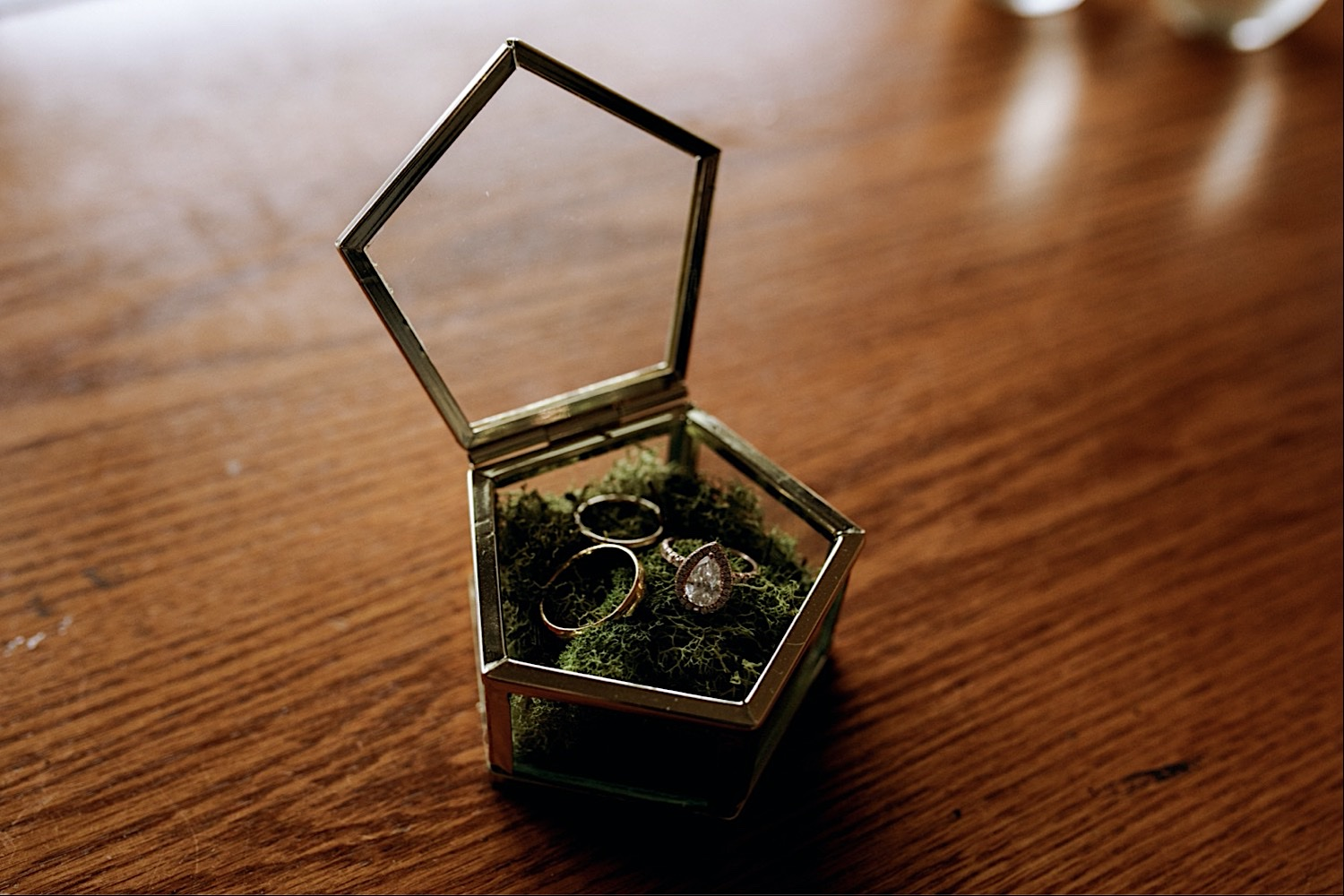 Bomoseen Lodge Wedding - Wedding Rings in a Glass Container with Spanish Moss