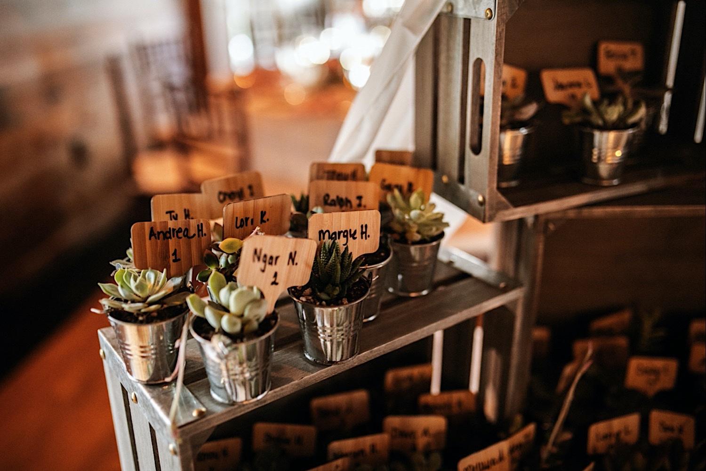 Bomoseen Lodge Wedding - closeups of party favors - succulents