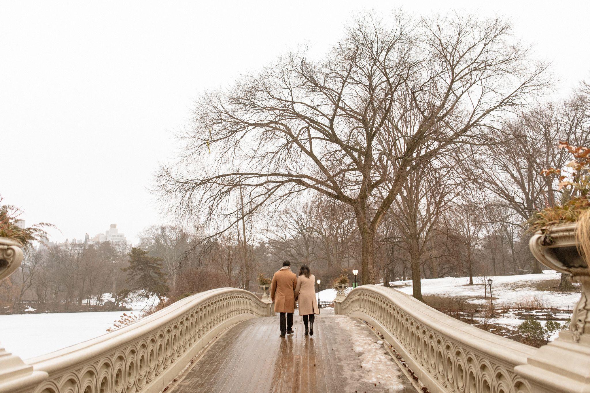 central park proposal nyc jose melgarejo 70